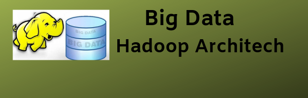 Big Data & Hadoop Architect